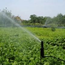 O sistema de irrigação no parque de criação