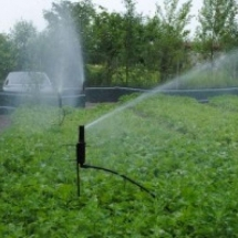 Bewässerungssystem